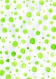 Grön modellvattenfärg för använd bakgrund Arkivfoton