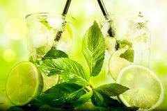 grön mojito Royaltyfri Foto