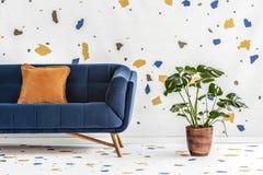 Grön monsteraväxt bredvid ett mörker - blå soffa med en orange kudde i en vit vardagsruminre med lastricotapeten verkligt royaltyfria bilder