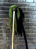 grön mop Fotografering för Bildbyråer