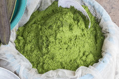 grön moss Royaltyfria Foton