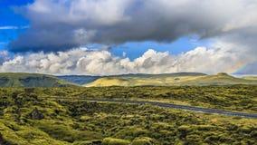 Grön mossa, Lava Field, Grindavik, Island Arkivbild