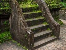 Grön mossa och växter täckte den gamla cementtrappuppgången royaltyfri foto