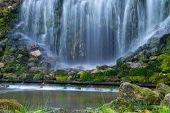 Grön mossa täckte stenar i vattenfall arkivfoton