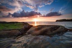 Grön mossunder den ljusa solen Fotografering för Bildbyråer