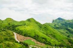 Grön moutain med det vita molnet Arkivbilder