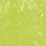 Grön murbruktextur Royaltyfri Fotografi