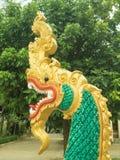 grön naga royaltyfria bilder