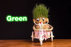 Grön nalle Fotografering för Bildbyråer