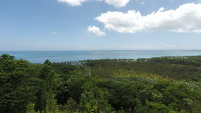 Grön naturlig karibisk strand nära Cabarete arkivfilmer