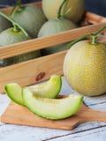 Grön netto melonfrukt arkivfoton