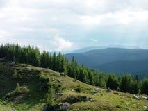Grön och blå natur Arkivfoto