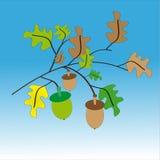 Grön och brun ekollon på blåvit bakgrund Stock Illustrationer