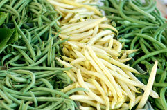 Grön och gul böna Royaltyfria Bilder