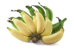 Grön och gul banan Royaltyfri Bild