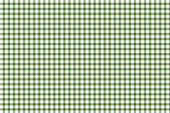 Grön och vit gingham Arkivfoto