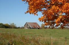 grön orange för ladugård fotografering för bildbyråer