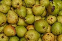 Grön päronbakgrund Arkivbild