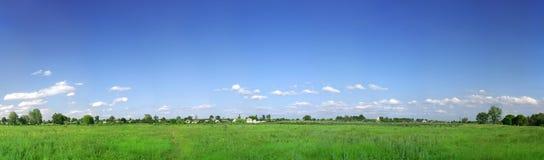 grön panorama för fält Royaltyfri Bild