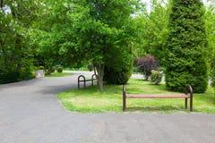 grön park Arkivfoto
