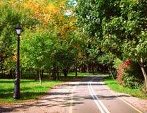 grön park för gränd Arkivbild
