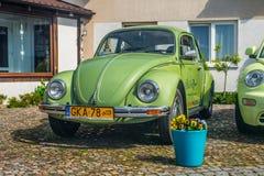 Grön parkerad Volkswagen Beetle bil Arkivbild