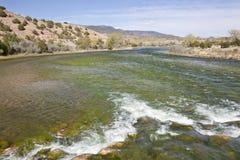 grön parkflod utah för brunt arkivbild