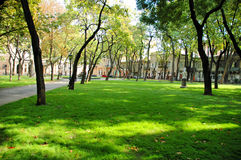 grön parkland Arkivbild