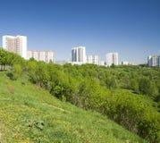 grön parksommar Arkivfoton