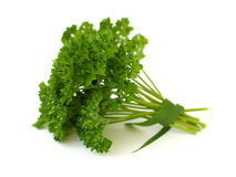 Grön parsley Royaltyfri Bild