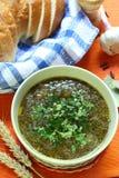 grön parsleysoup Fotografering för Bildbyråer