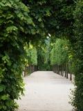 grön passageway arkivbilder