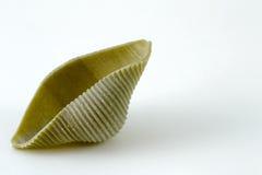 grön pasta Arkivbild