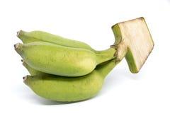 Grön Pisang Awak banan som isoleras på vit bakgrund Fotografering för Bildbyråer