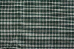 grön pläd Royaltyfri Fotografi