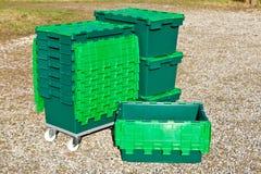 grön plast- för askar Arkivfoton