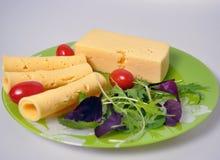 Grön platta med mat - ost, tomater, grönsallat royaltyfri foto