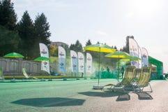 Grön port royaltyfri foto