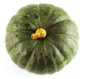 grön pumpa Royaltyfria Foton