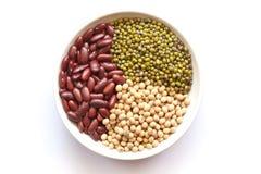 grön röd soy för böna Arkivbilder