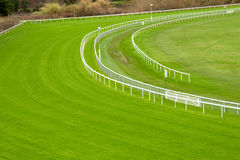 grön racecourse Arkivfoto