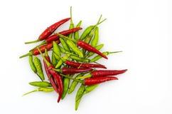 grön red för chili Arkivfoto