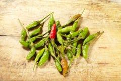 grön red för chili Royaltyfria Foton