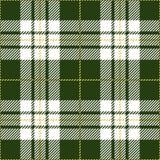 Grön sömlös skotsk modell för tartanpläd Royaltyfri Illustrationer