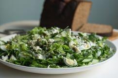 grön sallad Arkivfoto