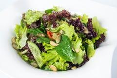 Grön sallad med spenat, peppar, söta ärtor och Royaltyfria Foton