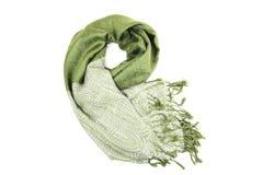 grön scraf Fotografering för Bildbyråer