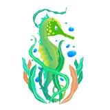 Grön seahorse Arkivbilder