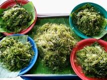grön seaweed Royaltyfri Fotografi