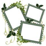 grön sidascrapbook för blom- ramar Royaltyfri Fotografi